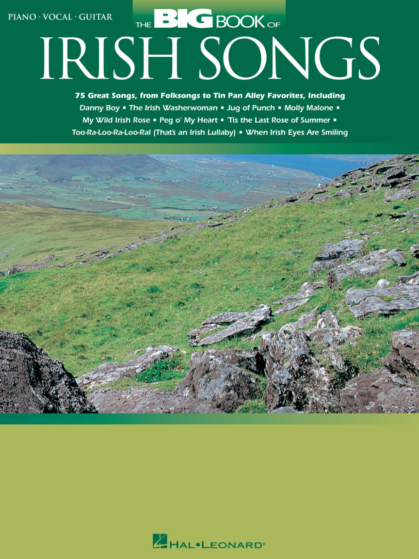Product Cover for The Big Book of Irish Songs